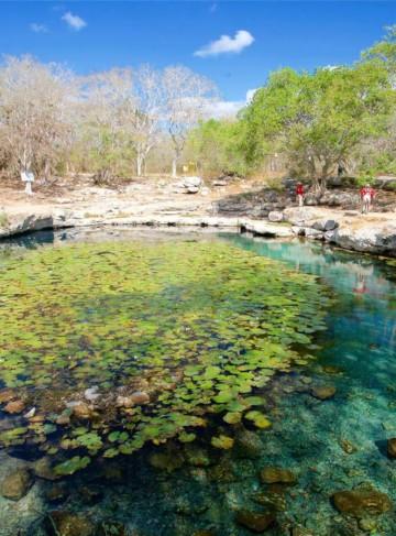 https://yucatan.travel/wp-content/uploads/2019/12/Merida-CenoteXlacah-Yucatan-Regiones-360x487.jpg